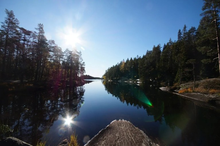 Read more about the article Tage 10 und 11 – Unterwegs in Schwedens Nationalparks