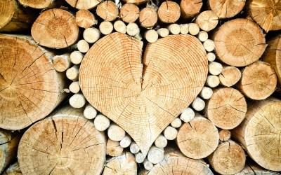 Training: Welches Training mag das Herz?
