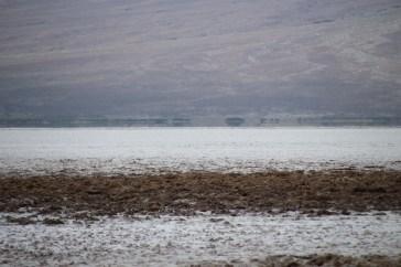 Der Salzsee ist nicht glatt