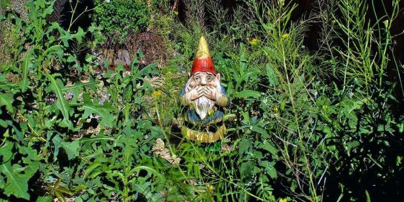garden gnomes walmart a brief history of garden gnomes mental floss grumpy garden gnome walmart