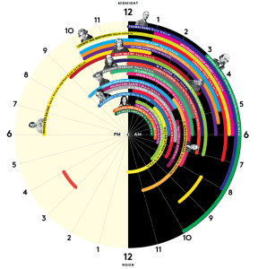 famous people sleep schedules