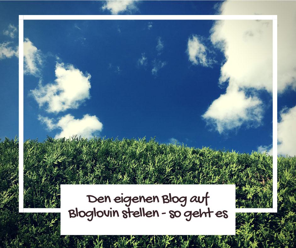 Seinen Blog auf Bloglovin eintragen - Anleitung