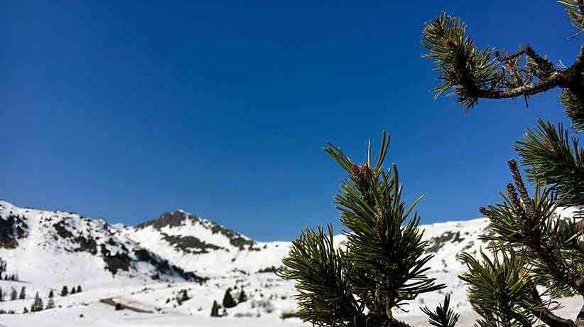 Obertauern im Frühjahr: Sonnenskilauf und Partytime – Infos zum Frühjahrsskifahren 2019 mit Event-Terminen, Liftbetriebszeiten u.v.m.