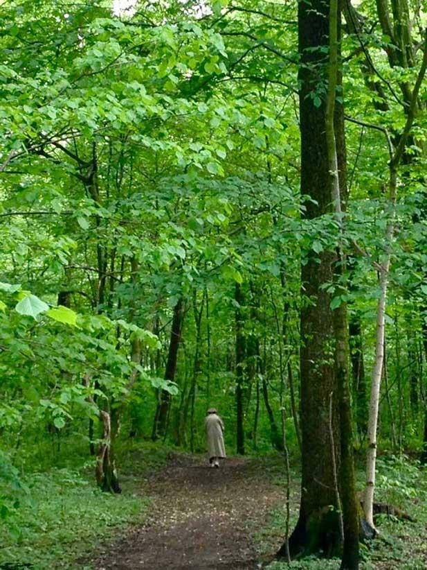 Covid-19-Krise: Auch Spaziergänge in der Natur können dazu beitragen, die Trennung vom gewohnten Leben leichter zu bewältigen.