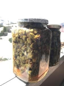 """Eingelegte Löwenzahnknospen, oft auch als """"falsche Kapern"""" bezeichnet, nach einem Rezept der Tauernhex. Foto: Tauernhex"""