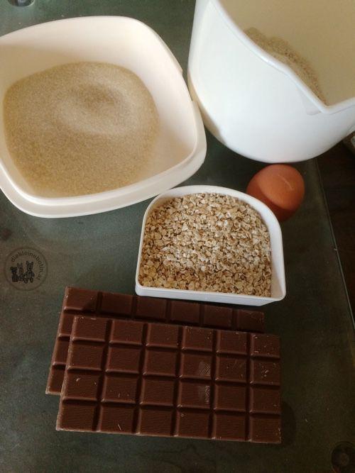 schoko-hafer-cookies-die kleine botin-1
