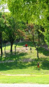 Kinder rennen einen Hügel herunter.