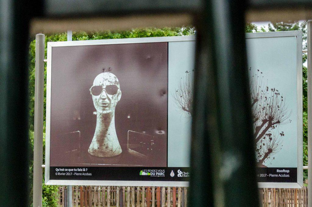 Kunstausstellung im Park.