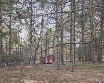 Quiet Wood. Bild Paul Kranzler und Andrew Phelps