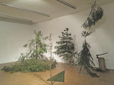 5 trees in der Maerz. Foto Betty Wimmer
