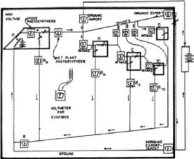 Howard Odums erste Ökosystemdarstellung basierend auf Symbolen und Ästhetik von elektrischen Schaltplänen. Bild Howard Odum, 1960