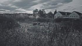 Das Gesagte ist mit Bildern nicht zu fassen. Bilder Surviving Gusen von Harringer/Pröll; Foto Bright Films Gmbh
