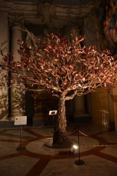 Bäume in Sant'Ignazio