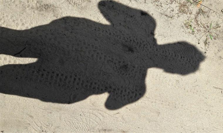 Großer Sand 15