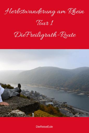 Herbst Rhein.png2