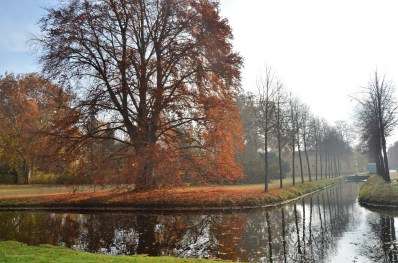 Potsdam (171)