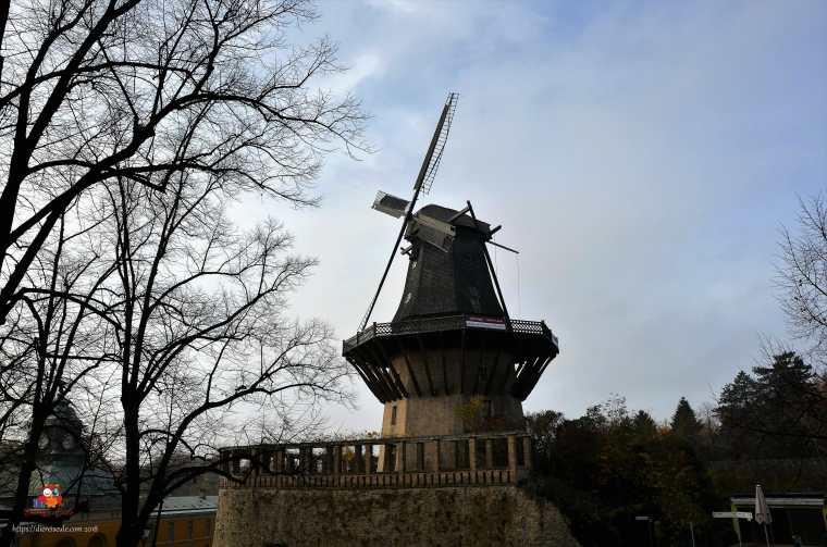 Potsdam (134)1