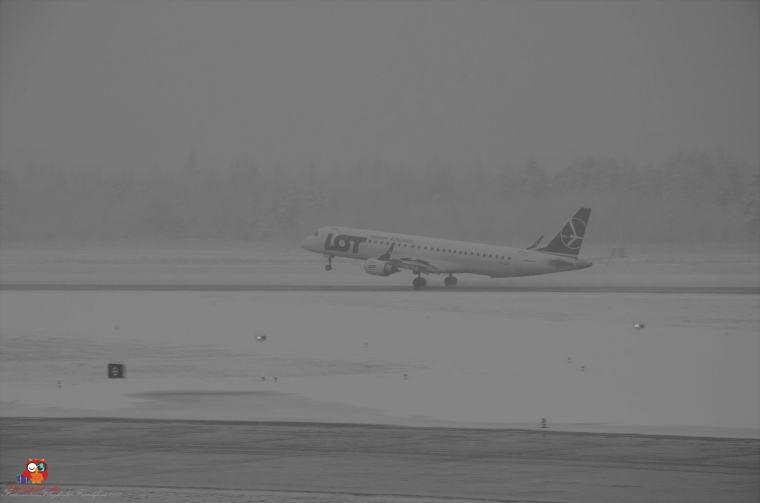 Flugzeuge-Flughafen (16)