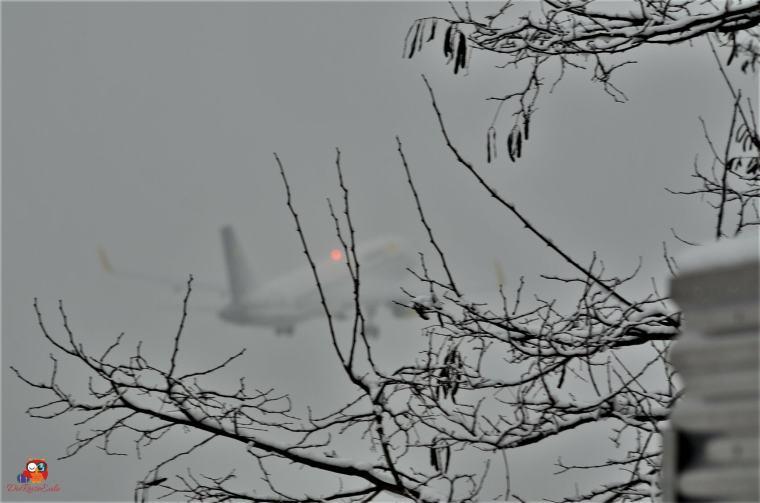 Flugzeuge-Flughafen (23)