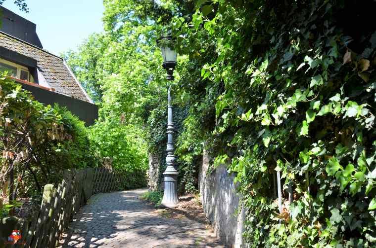 Kirschgarten (3a)-min