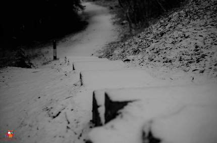 Schneefall (4)