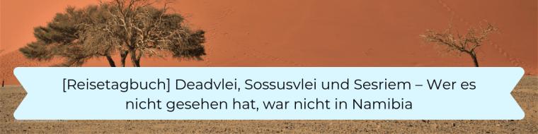 Reisetagbuch 4 Deadvlei, Sossusvlei und Sesriem
