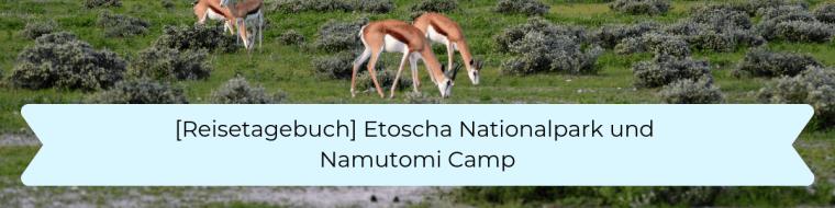 Reisetagebuch 9 Etoscha Nationalpark