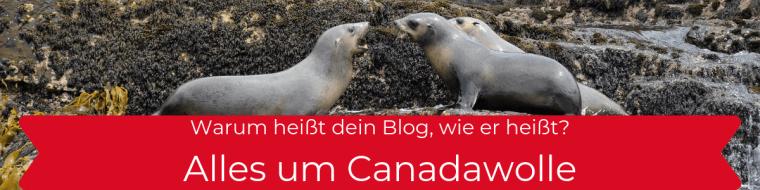 Alles um Canadawolle
