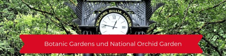 Botanic Gardens und National Orchid Garden