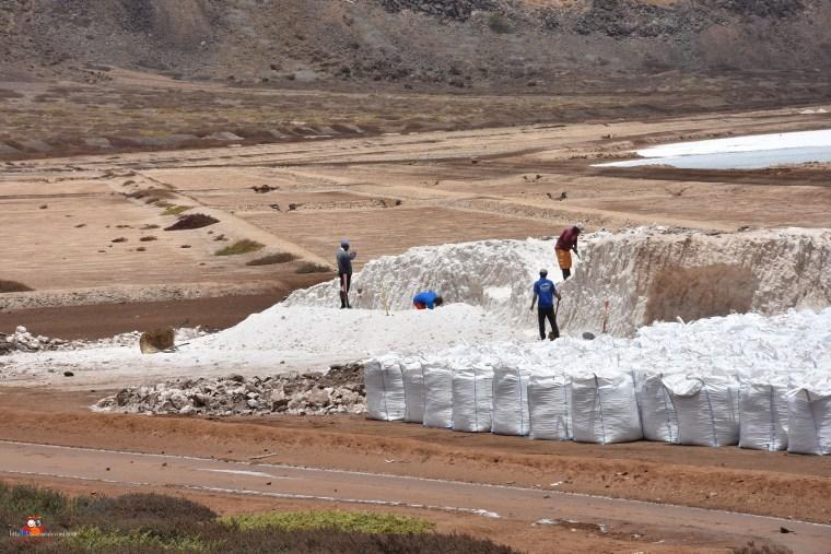 Salzgewinnung in Pedra Lume