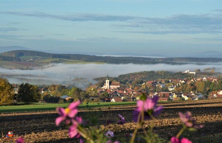 Neualbenreuth vom Grenzlandturm aus
