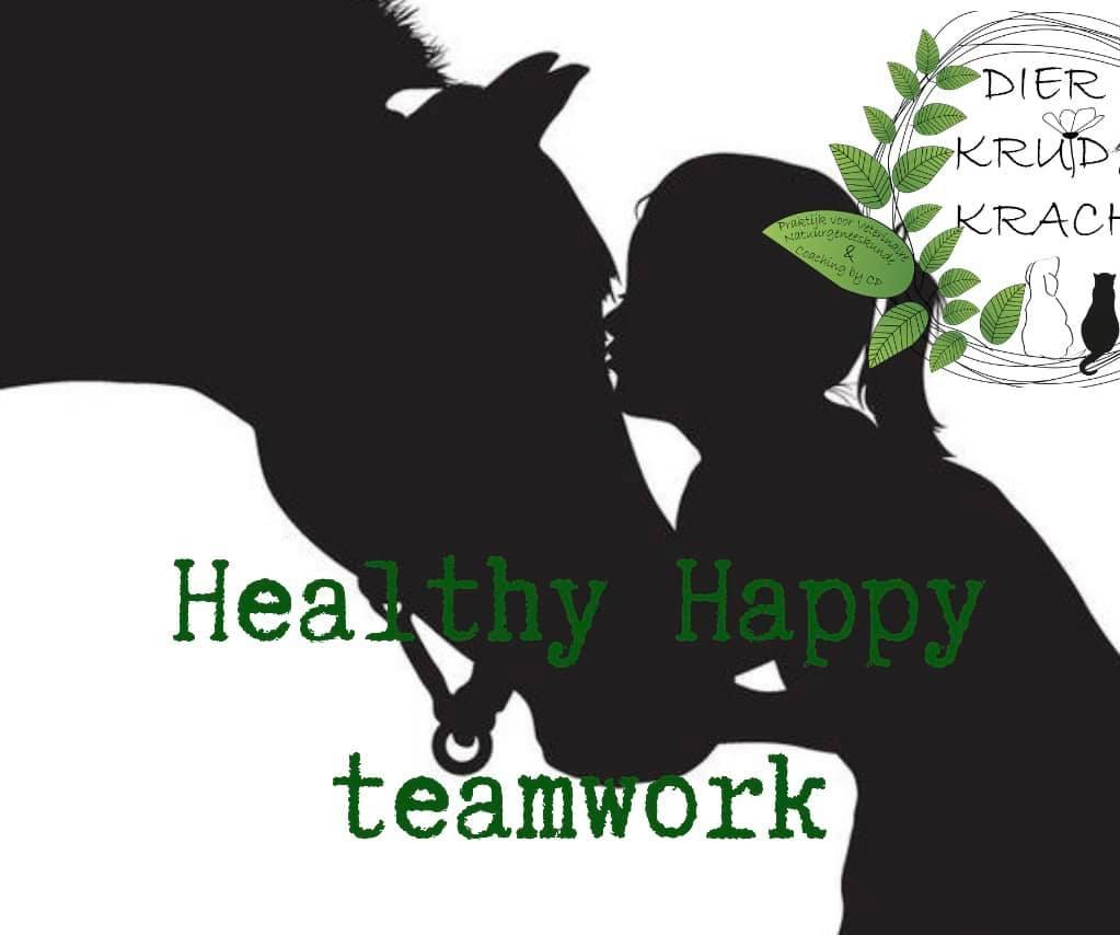Healthy Happy teamwork©️paard Verstevig jouw team!