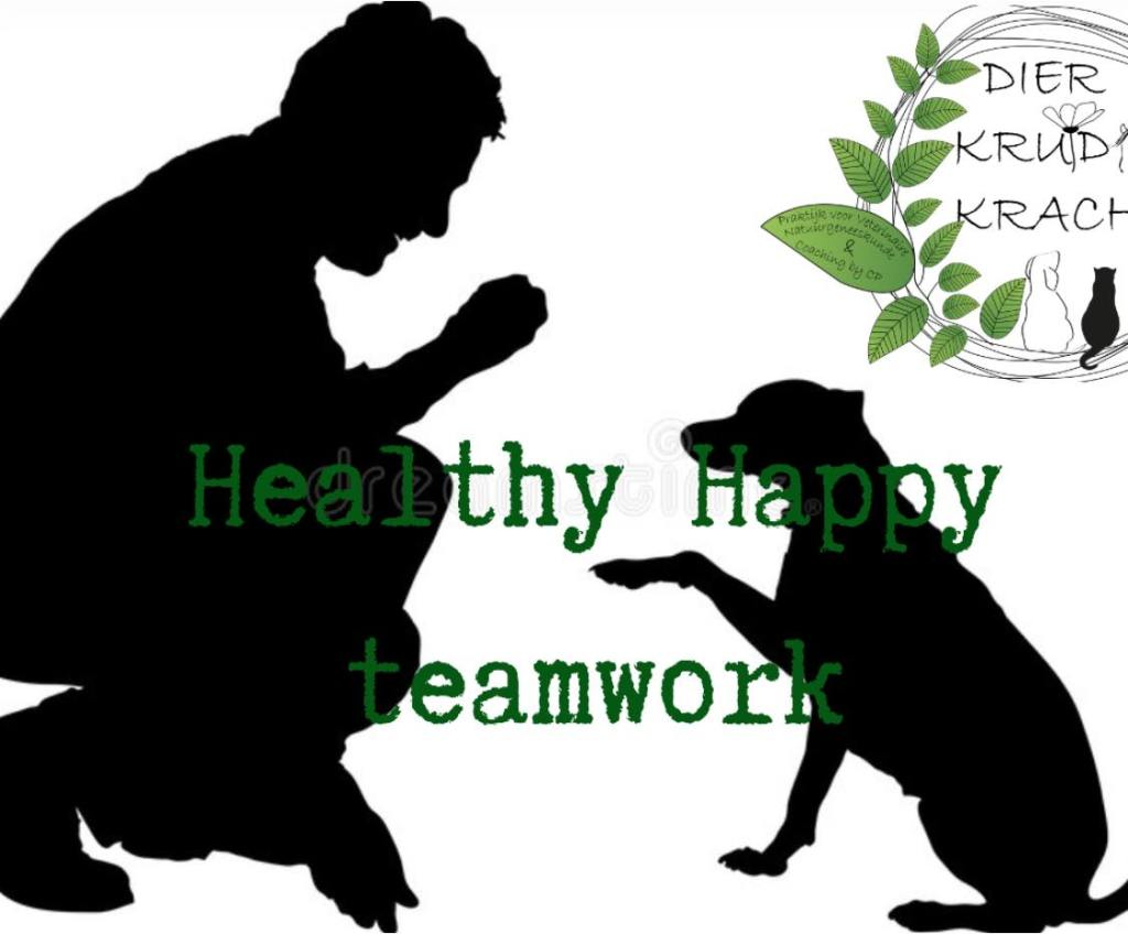 Healthy Happy Teamwork©️