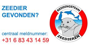 RTZ Nederland
