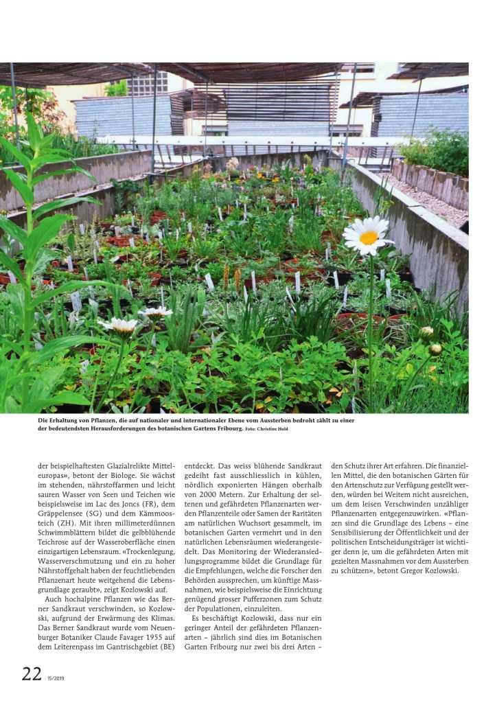 Das leise Sterben der Schweizer Flora 3