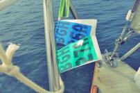 Bagö Törnziel Hafen Segeln