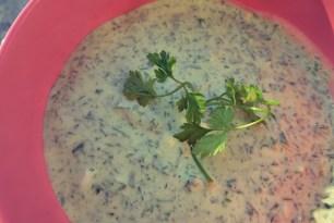Grüne Soße, kaltes Kräuter Rezept für Sommer, Segeln und Outdoor