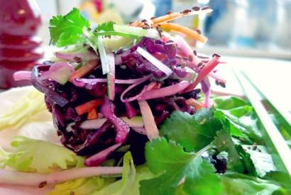 Wintersalat Rotkraut Rezept für Segeltörn