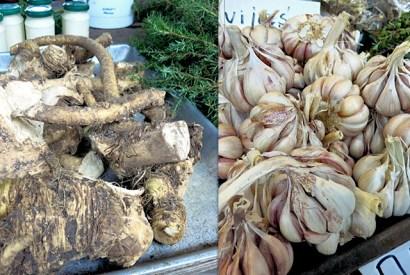 Wurzeln und Kräuter Riga Zentralmarkt