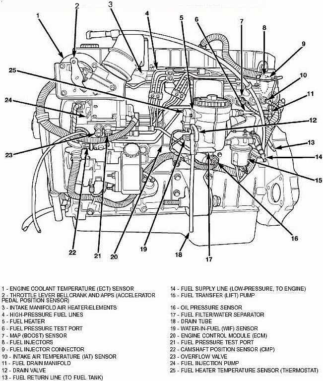 Diagram V 8 Engine Diagram Diagram Schematic Circuit Variables