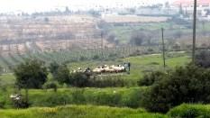 Schafsherde mit arabischen Hirten, Alon Shvut