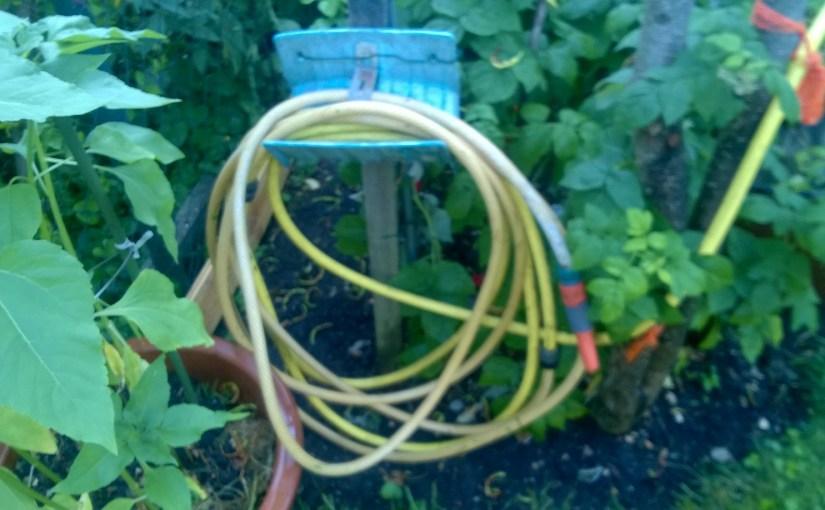 Stress im Garten Schlauch