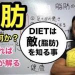 「脂肪とは何か?」ダイエットするなら脂肪を知ろう!