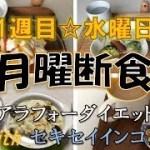 1週目水曜日【アラフォーダイエット】月曜断食とスクワットチャレンジ【with セキセイインコ】