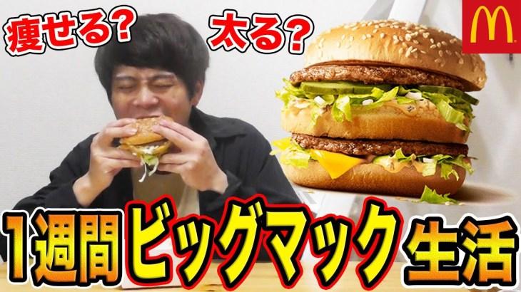 一週間ビッグマックを1日3食食べ続けたら太る?痩せる?【検証】