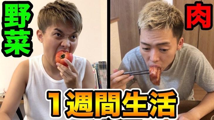 【検証】1週間、肉と野菜のみ生活何キロ痩せるのか?(ダイエット)