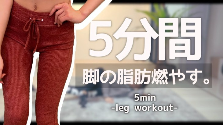 2020年最新版!脚やせしたきゃまずはこれをやれ!! // leg workout