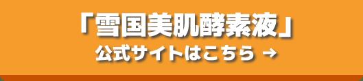 banner_yukigunibihadakou