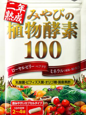 植物酵素100パッケージ