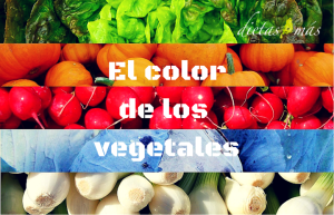 El color de los vegetables